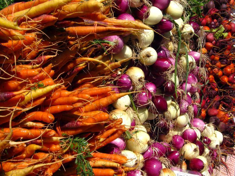 Köztes zöldségtermesztés