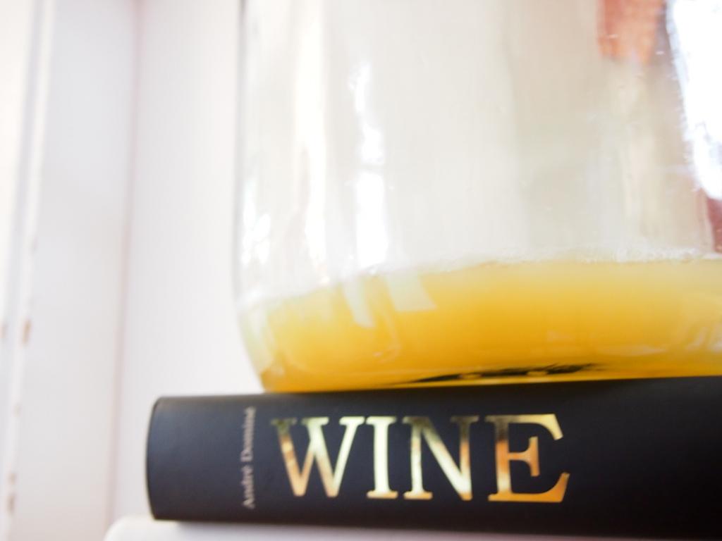 Pitypangból bor
