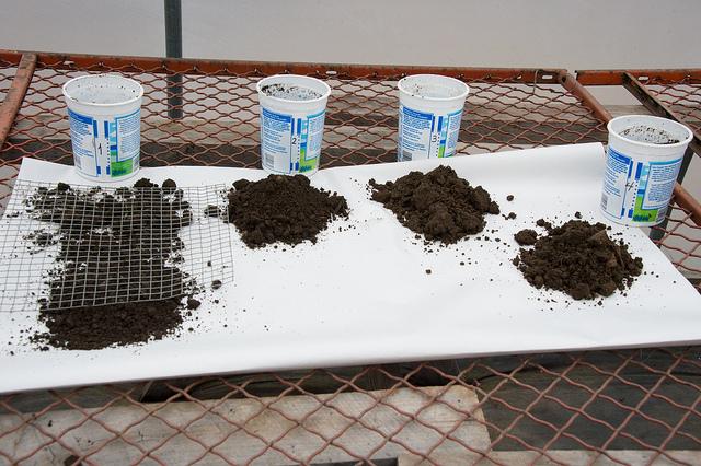 A talaj pH értékének vizsgálata